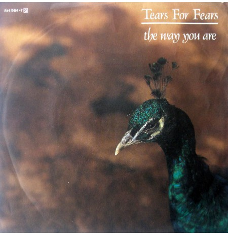 TEARS FOR FEARS THE WAY YOU ARE ~ THE MARAUDERS