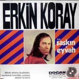 ERKİN KORAY ŞAŞKIN ~ EYVAH PLAK
