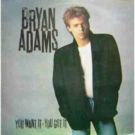 BRYAN ADAMS YOU WANT IT-YOU GOT IT LP. PLAK